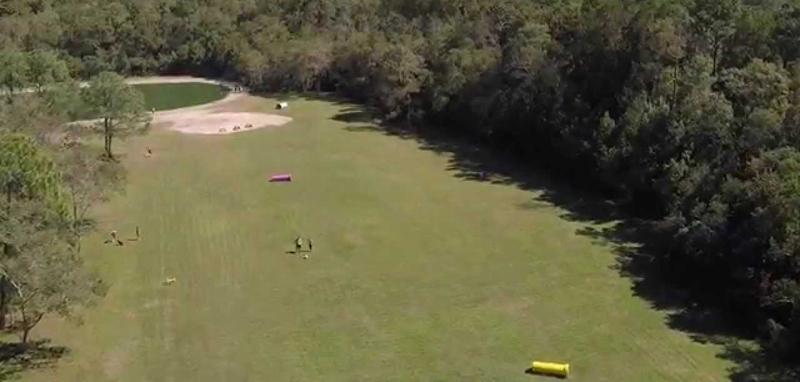 Dog Wood Park Jacksonville
