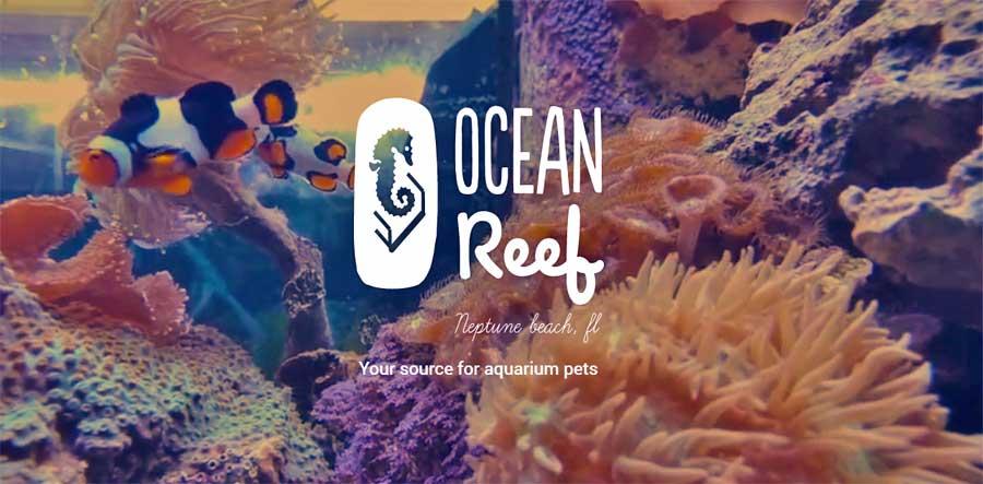 Ocean Reef Pets