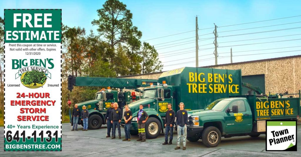 Free Estimate for Tree Services