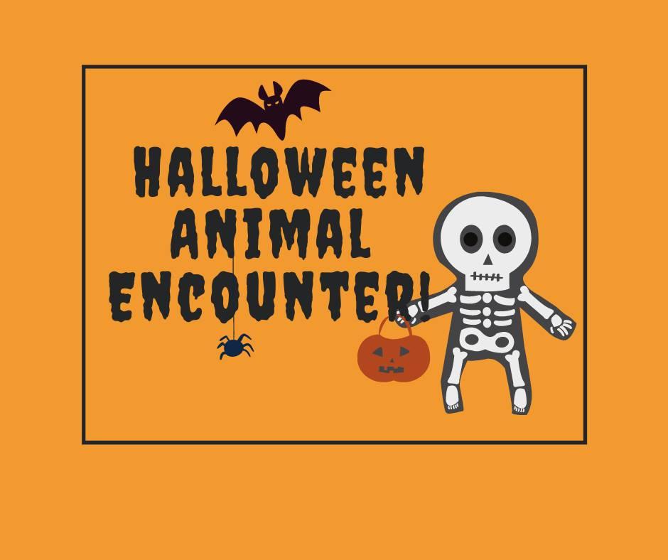 Halloween Animal Encounter